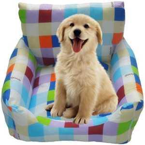 Farbenfroher Hundesessel
